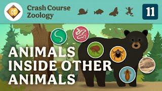 Parasites: Crash Course Zoology #11