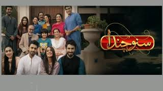Best family dramas of Pakistan. A must watch