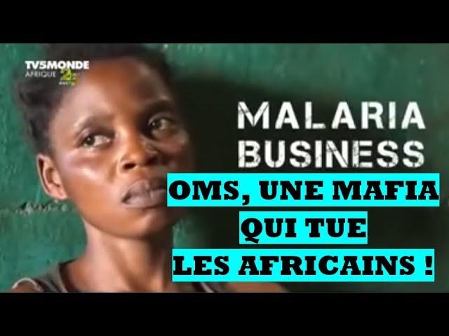 Paludisme : le scandale révélé par Malaria Business.