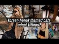 Korean Traditional Hanok Themed Cafe, Adopt Kittens?, Professional Hair Treatment | DTV #56