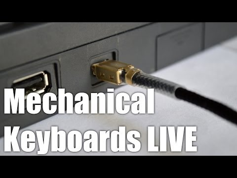 LIVE! Mechanical Keyboards for NOOBS