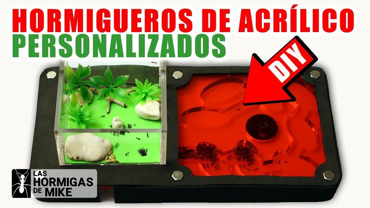 Cómo Personalizar Hormiguero Acrílico - DIY | Las Hormigas de Mike