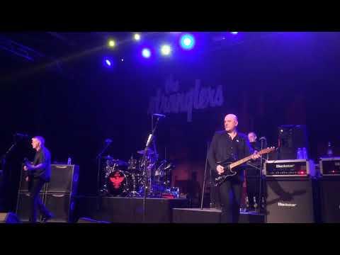 The Stranglers -Always the sun- en live à Chambray-Les-Tours le 30 novembre 2017!