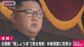 北朝鮮が日本海に向け飛翔体2発を発射 韓国軍(19/08/06)