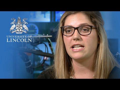 postgraduate-loans-at-the-university-of-lincoln-|-university-of-lincoln
