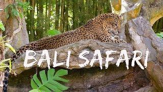 Бали - путешествия с ребенком. Бали Сафари парк / Парк птиц на Бали -  Серия 3