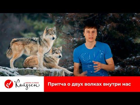 Притча о двух волках внутри нас