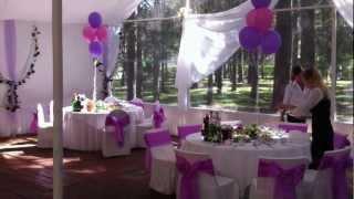Красивая свадьба в красивом  свадебном шатре в парке.
