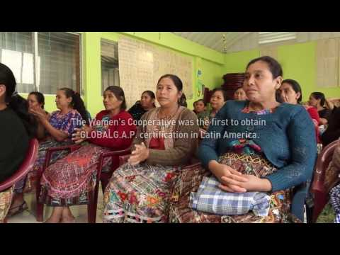 A female entrepreneur in the highlands of Guatemala