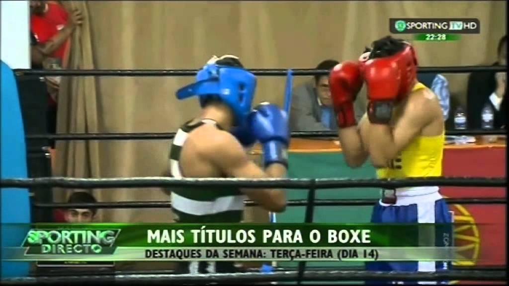 Boxe :: Sporting vencedor dos campeonatos Regionais de Lisboa para a Taça de Portugal em 2014