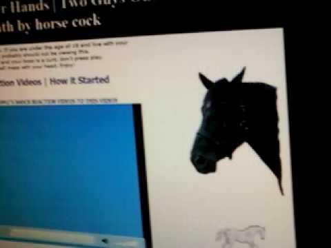 2 Guys 1 Horse Video Reaction