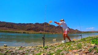ЗДЕСЬ РЫБА ПРОСТО КИШИТ ЛОВИТСЯ НА ЛЮБУЮ СНАСТЬ Рыбалка на донки поплавок спиннинг