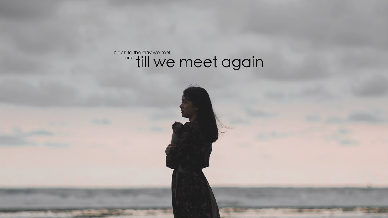 Alffy Rev - Till We Meet Again (ft Little Linka) Official Music Video