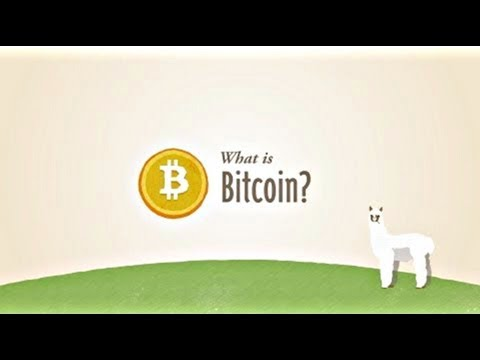 Bitcoins for dummies explained sum sports betting rakeback