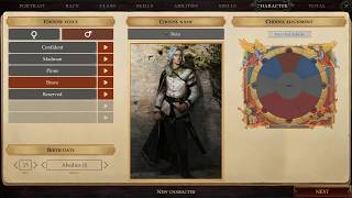 Pathfinder Kingmaker Beta 1 Gameplay