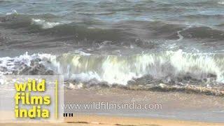 Kollam Beach - Kerala