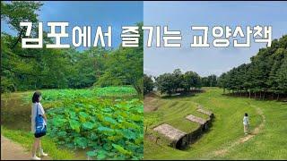 [2021 김포시 SNS 홍보 콘텐츠 공모전] 김포에서…