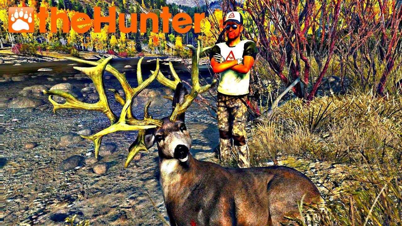 thehunter huge nontypical mule deer hd youtube