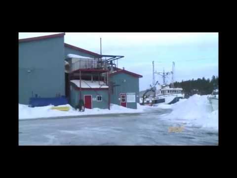 Breakwater Fisheries Fire in Cottlesville Newfoundland on March 22 2015