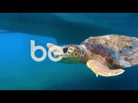 Travel to Belize - Southeast Belize