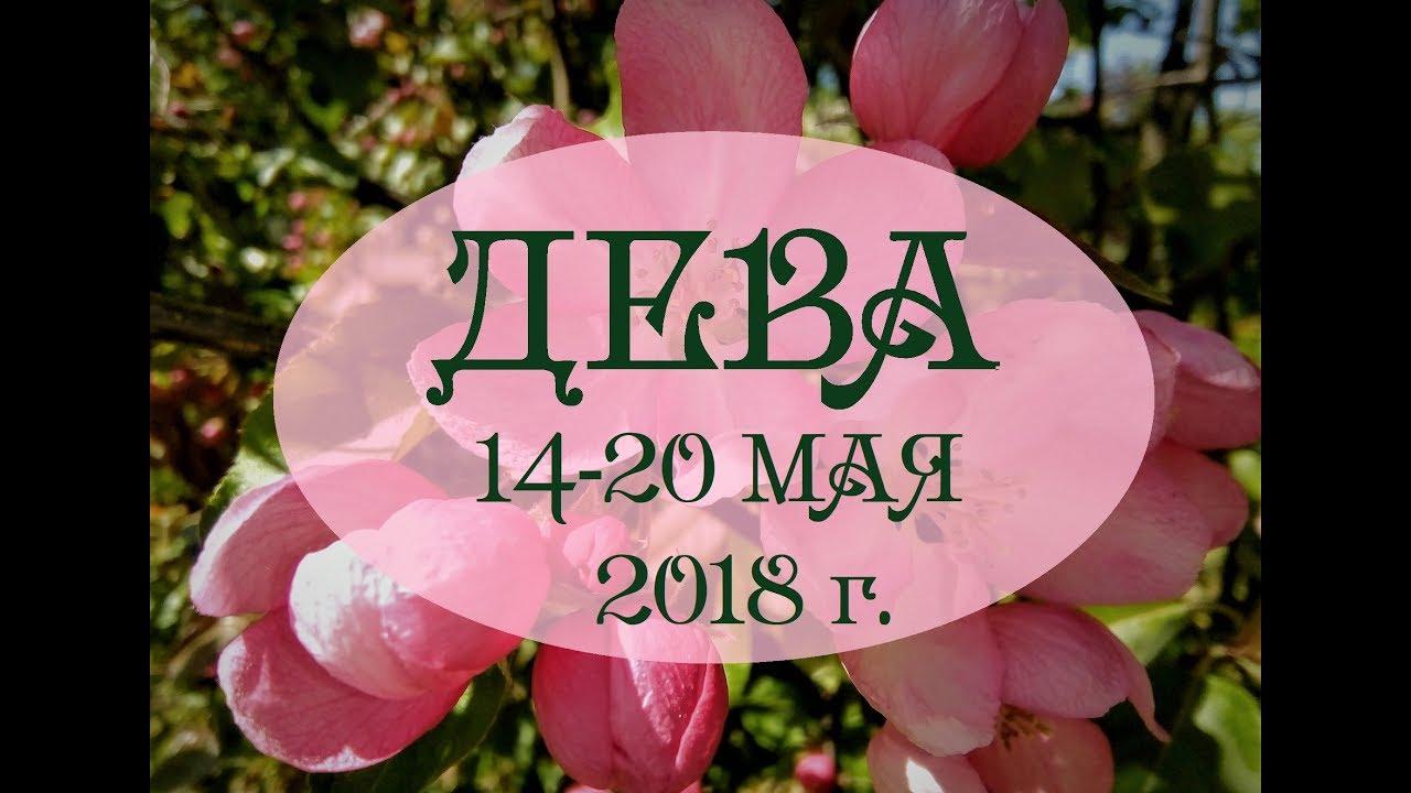 ДЕВА.Таро гороскоп с 14 по 20 мая 2018г. Онлайн гадание.