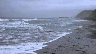 根室フレシマ海岸の波です.