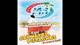 Video Cahuates, Pistaches (No Podrás) download MP3, 3GP, MP4, WEBM, AVI, FLV Agustus 2018