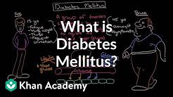 hqdefault - Articulos De Diabetes Mellitus En Ingles