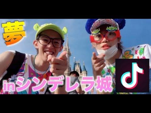 【夢が叶った】シンデレラ城の前でTikTok撮ってみた!!!【ディズニー】