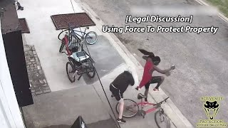 Using Force To Protect Property
