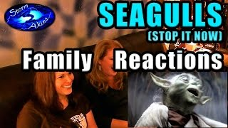 SEAGULLS Family REACTIONS Hilarious song!