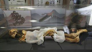 دراسة: الأرجل المحنطة المكتشفة في مصر تعود لنفرتيتي