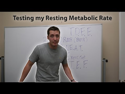 Getting My Resting Metabolic Rate Tested