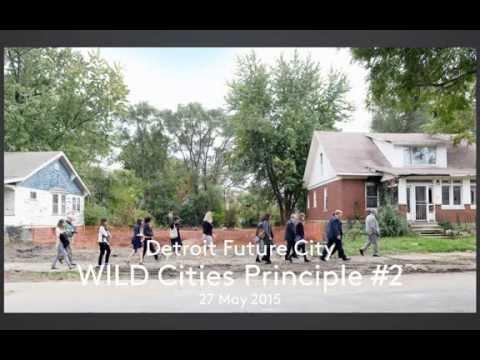 WILD Cities Webinar—Detroit Future City on Detroit's Land Transformation
