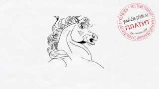 Смотреть как поэтапно нарисовать голову лошади  Учимся рисовать лошадь(как нарисовать лошадь, как нарисовать лошадь поэтапно, как нарисовать карандашом лошадь, как нарисовать..., 2014-08-07T06:13:56.000Z)