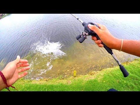 INSANE Peacock Bass FISHING In MIAMI!!
