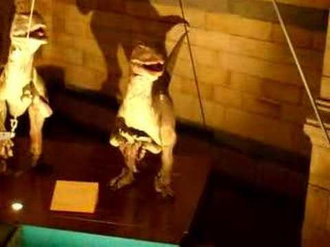 Dromaeosaurus in London