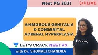 Ambiguous genitalia, intersex, micropenis, and hypospadias.