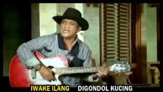 Campursari dangdut indonesian music -Rini Sinden Genit & Didi Kempot Digondol Kucing