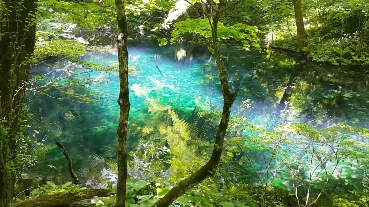 日本白神山地十二湖沸壺之池 Youtube