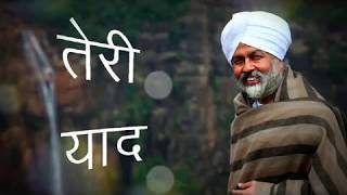 Ishq Zinda Rahega || Teri Yaad || Nirankari Audio song