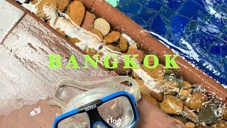 7 DAYS IN BANGKOK 여행 마지막 날, 방콕…