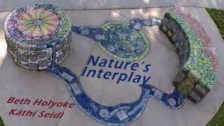 Nature's Interplay
