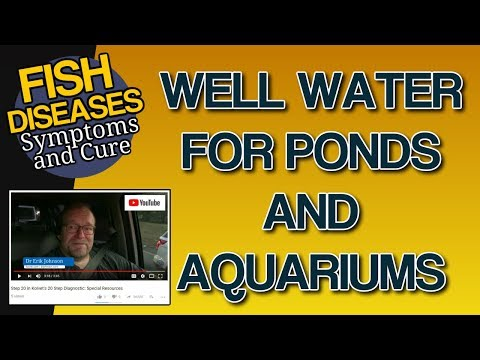 Well Water In An Aquarium Or Well Water And Fish Tanks: Safe?