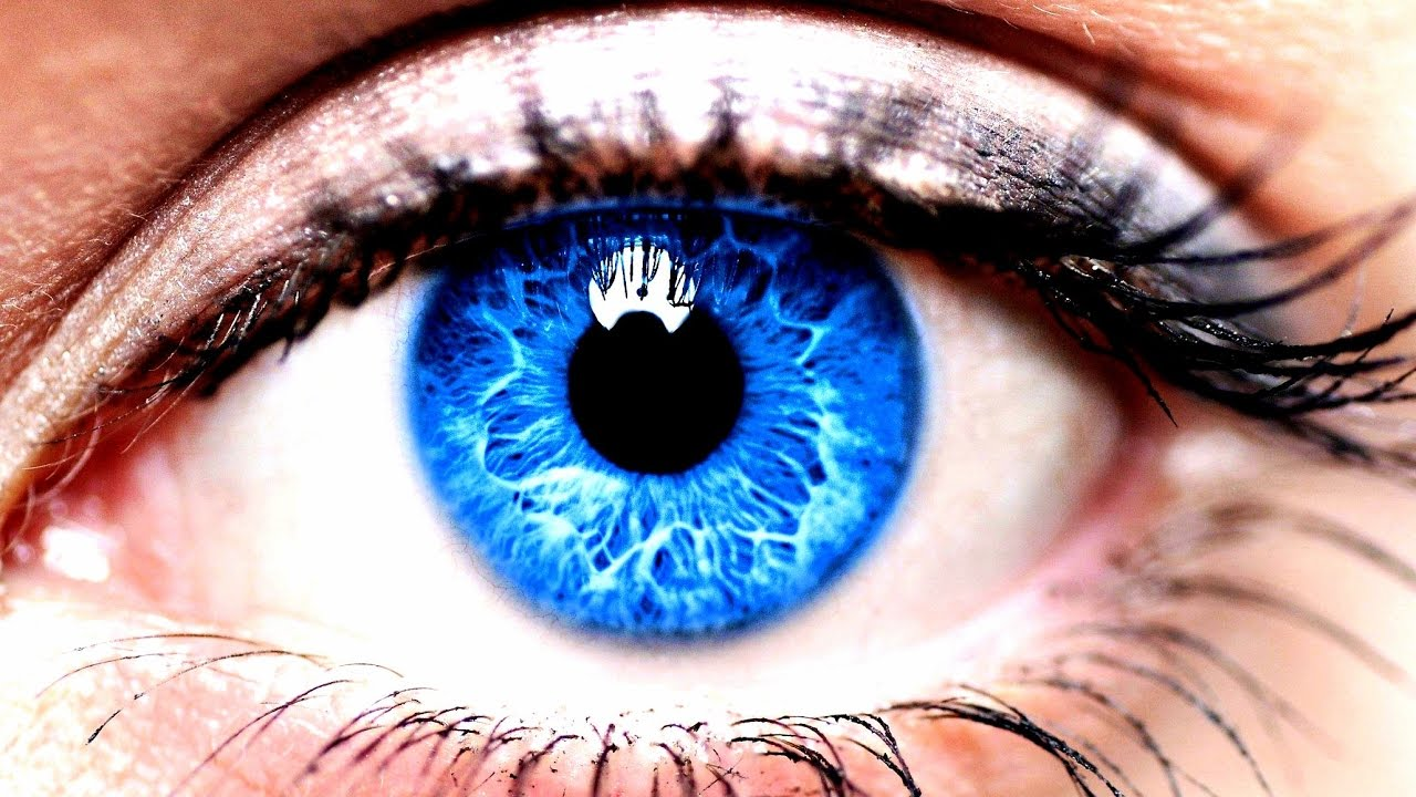 ojos azules Search, page 1 -