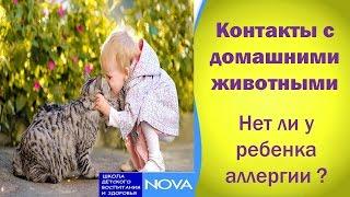 Контакты с домашними животными. Нет ли у ребенка аллергии ?.