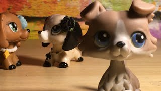 Lps 'I found a girl'