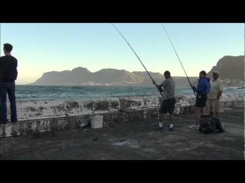 Live Bait Restaurant, Kalk Bay, Cape Town