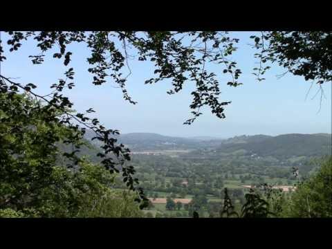 Gwydyr Forest,  N.Wales UK  in HD