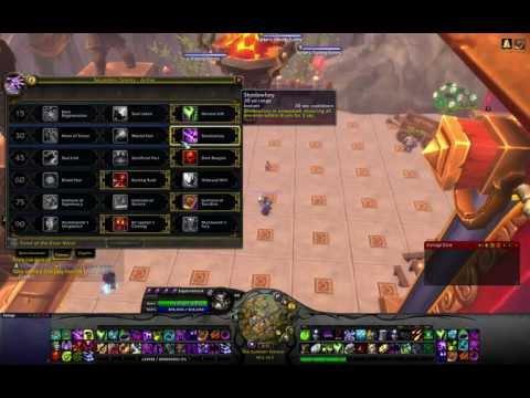 5.1 Affliction Warlock DPS PvE(Raiding)